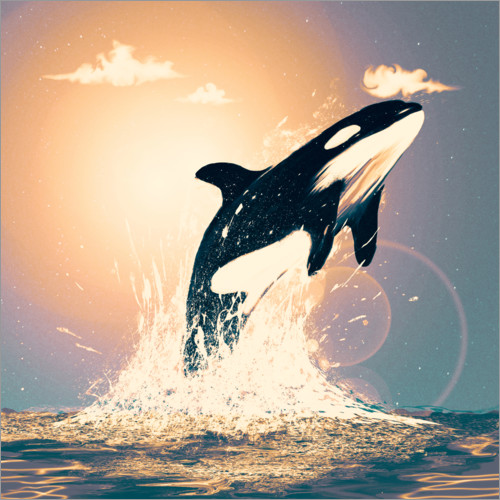 Premium poster Orcas can fly