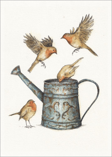Premium poster Robins at the watering can