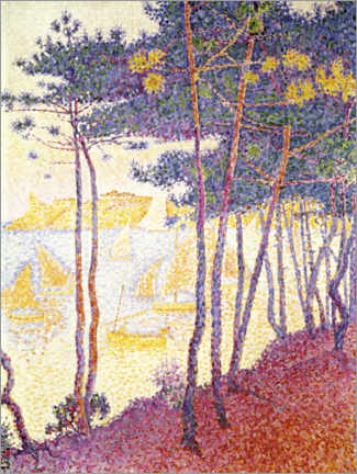 Premium poster Pine trees and sailing boats