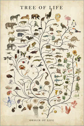 Hout print  Tree of Life - Studio W