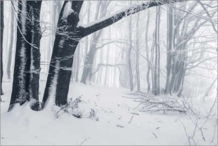 Canvas print  Fog in the snowy winter forest - The Wandering Soul