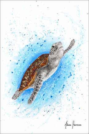 Acrylglas print  Happy Sea Turtle - Ashvin Harrison
