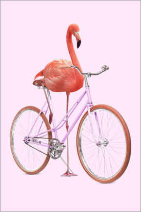 Aluminium print  Flamingo Bike - Jonas Loose