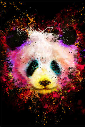 Canvas print  Panda - Dmitry Belov