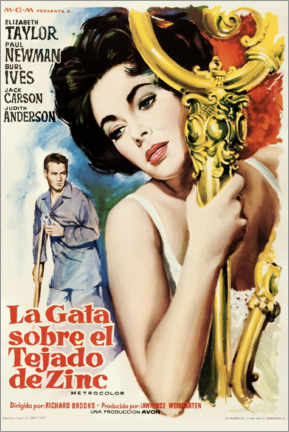 Acrylglas print  Cat On A Hot Tin Roof (Spanish) - Entertainment Collection