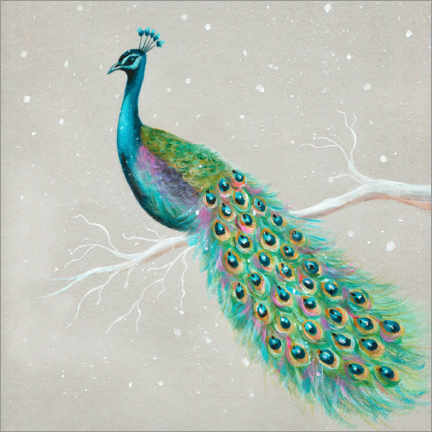 Canvas print  Peacock in winter - Ileana Oakely
