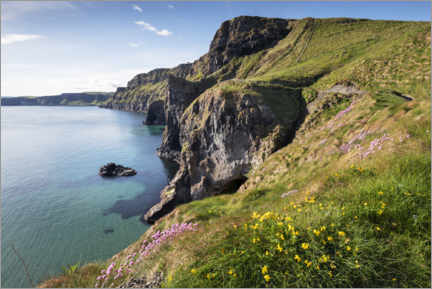 Hout print  Calm bay in Ireland by the sea - The Wandering Soul
