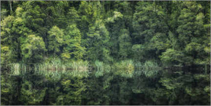 Premium poster  Green reflection - André Wandrei