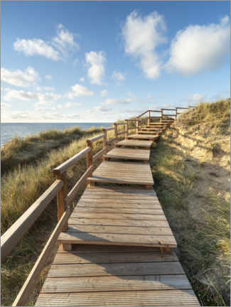 Acrylglas print  Wooden walkway on Sylt near Kampen - Jan Christopher Becke