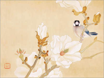 Canvas print  White magnolia, Java sparrow - Ishizaki K?y?