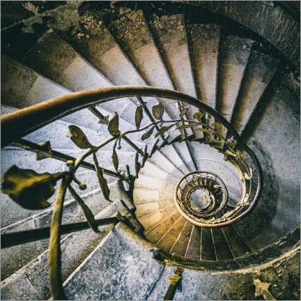 Hout print  Spiral stairacse in a derelict hotel - Irnmonkey