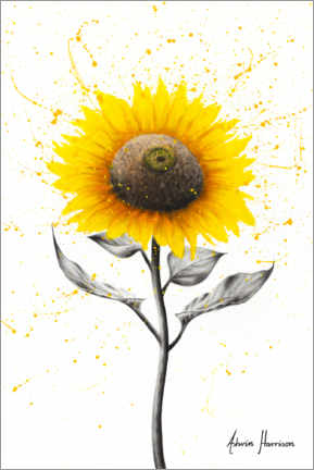 Canvas print  Sunflower Celebration - Ashvin Harrison