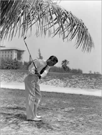 Premium poster Golfers under palm trees in Florida, 1930s