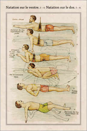 Hout print  Swimming styles (French) - Wunderkammer Collection