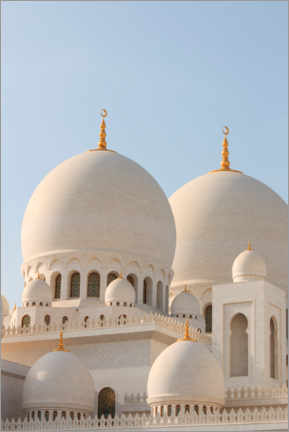 Hout print  The Sheikh Zayed Mosque in Abu Dhabi - CuboImages