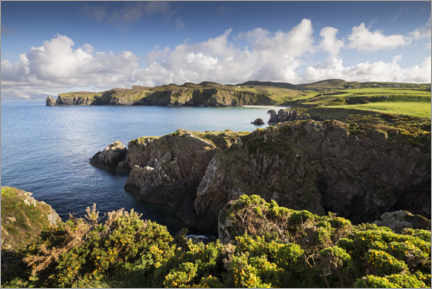 Hout print  Ireland's coastline with hills and coves in sunshine - The Wandering Soul