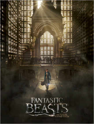 Premium poster  Fantastic Beasts and Where to Find Them - Newt