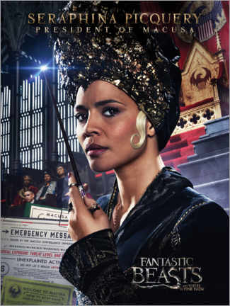 Premium poster  Fantastic Beasts and Where to Find Them - Seraphina Picquery