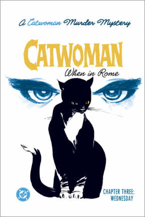 Premium poster  Catwoman Mystery
