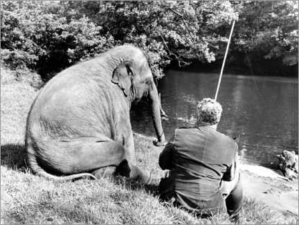 Premium poster Elephant and human sit together by the river