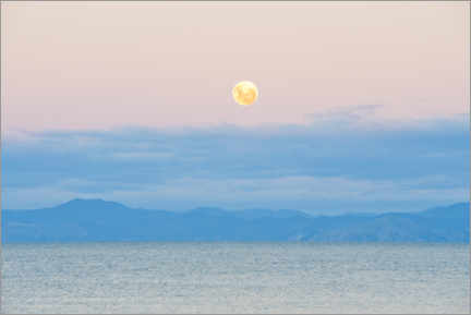 Muursticker  Moon rise on Kaiteriteri Beach, New Zealand - Matthew Williams-Ellis
