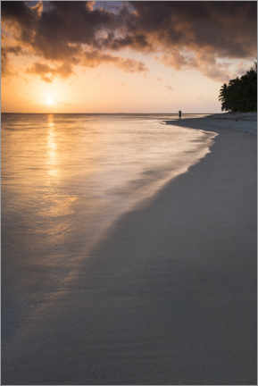 PVC print  Sunset on a tropical beach - Matthew Williams-Ellis
