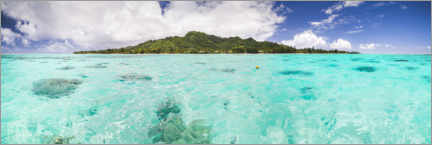 Acrylglas print  Tropical island of Rarotonga in the Pacific Ocean - Matthew Williams-Ellis