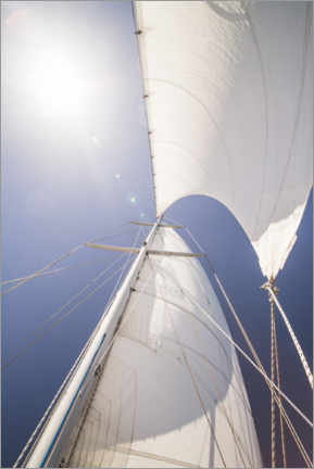 Muursticker  Sails and summer sun - Matthew Williams-Ellis