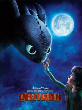 Aluminium print  How to train your dragon