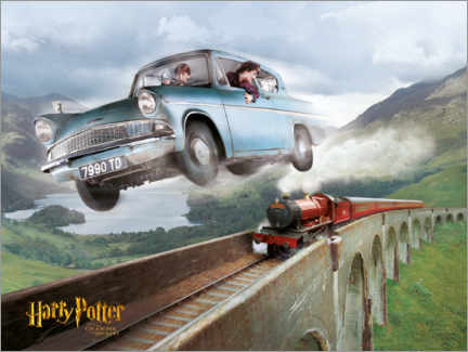 Premium poster  Harry and Ron - The Chamber of Secrets