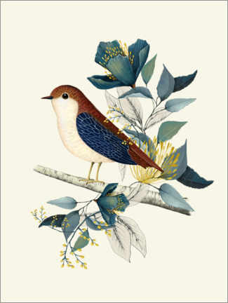 Premium poster Floral with bird I