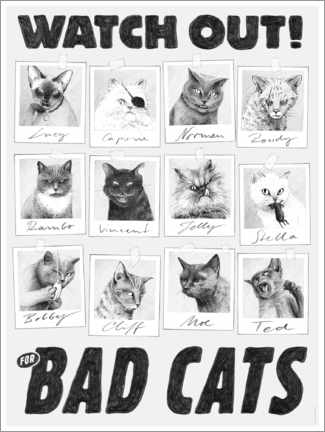 Canvas print  Watch out for bad cats - Janta Island