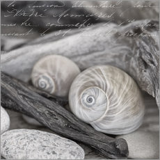 Gallery print  At the beach - Andrea Haase Foto