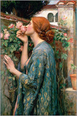Gallery print  De ziel van de Rose - John William Waterhouse