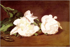 Muursticker  Branch of White Peonies and Secateurs - Edouard Manet