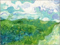 Muursticker  Green Wheat Fields, Auvers - Vincent van Gogh