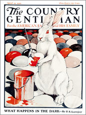 Gallery print  Cover of Country (White Rabbit) - Remsberg