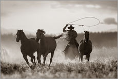 Gallery print  Cowboy of the horses catches - Richard Wear