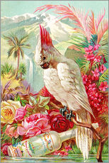 Muursticker  Cocktail Cockatoo - Advertising Collection