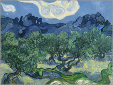 Acrylglas print  Olive Trees with the Alpilles in the Background - Vincent van Gogh