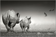Muursticker  Rhino cow with calf - Johan Swanepoel