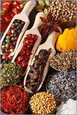 Gallery print  Colorful aromatic spices and herbs