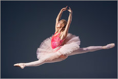 Gallery print  pink tutu and pointe shoes