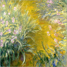 Gallery print  iris - Claude Monet