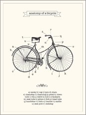 Muursticker  Vintage parts of a bicycle anatomy - Nory Glory Prints