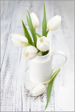 Gallery print  White tulips on whitewashed wood