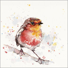Gallery print  Adventure awaits (robin red breast) - Sillier Than Sally