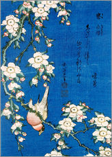 Gallery print  Goudvink tussen kersenbloesems - Katsushika Hokusai