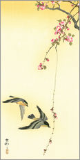 Muursticker  Starlings and Cherry Tree - Ohara Koson