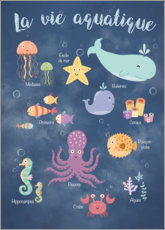 Canvas print  Life underwater - French - Kidz Collection